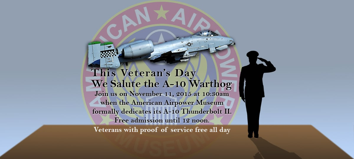 This Veteran's Day we Salute the A-10 Warthog